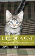 Life of a Cat: Lessons That Every Feline Needs to Learn